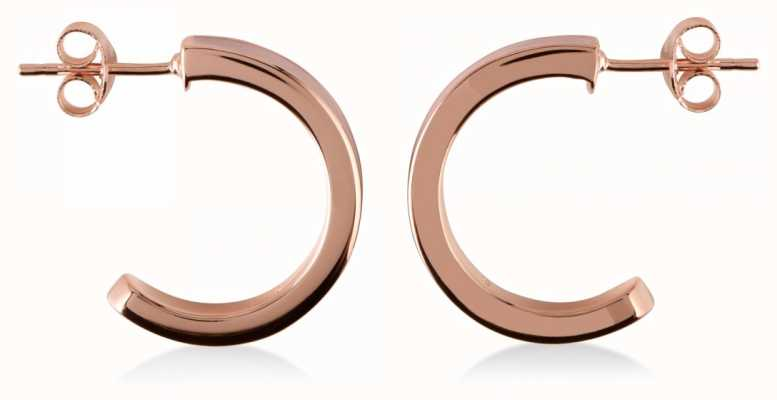 Radley Jewellery Hatton Row Rose Gold Earrings RYJ1012