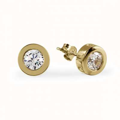 Radley Jewellery CZ Set Gold Stud Earrings RYJ1032