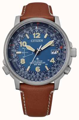 Citizen Men's Eco-Drive World Perpetual A.T CB0240-11L